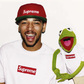 Small_kermit-supreme-terry-richardson-3